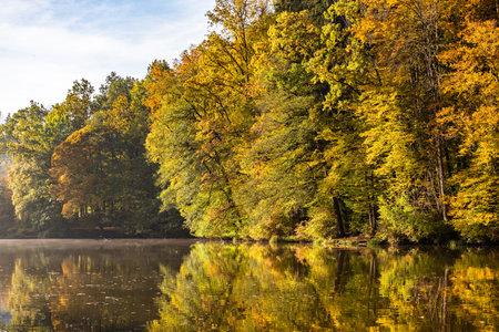 Lake fog landscape with Autumn foliage and tree reflections in Styria, Thal, Austria. Autumn season theme. Stock Photo