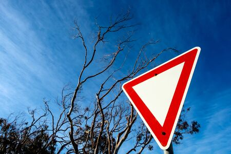 A top-down triangular red-white signboard, template with beautiful natural sky background, striped shaped clouds and dried tree branches