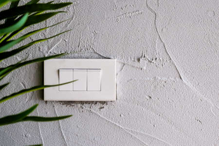 An isolated clear white light switch on the white grunge texture wall and background with tree foreground