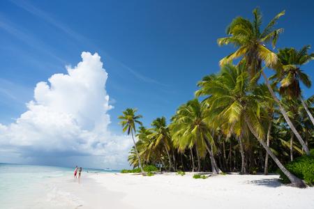 cana: Saona Island in Punta Cana, Dominican Republic