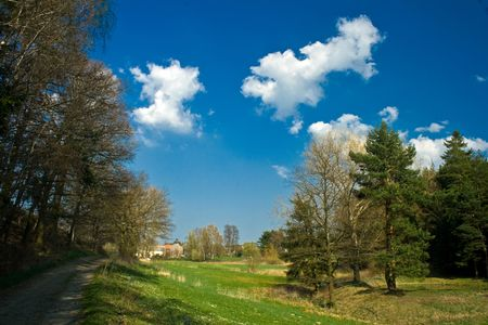 landschaft: Sunny spring meadow Stock Photo