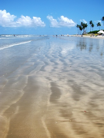 Porto de Galinhas, Brazil: gorgeous dreamy tropical beach.