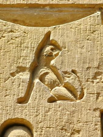 Archaeological site of Kom Ombo, Egypt  carving of a small cat Stock Photo
