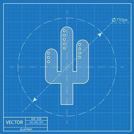 Desert cactus illustration. Plants vector blueprint icon