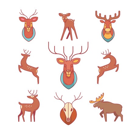 venado: Saltando y de pie ciervos, alces, astas y cuernos, cabezas de venado de peluche y scull. Iconos de línea delgada. Símbolos de estilo plana modernos aislados en el blanco para la infografía o uso de la Web.