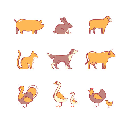Domestic and farm animals. thin line icons set. Modern flat style symbols isolated on white for infographics or web use.