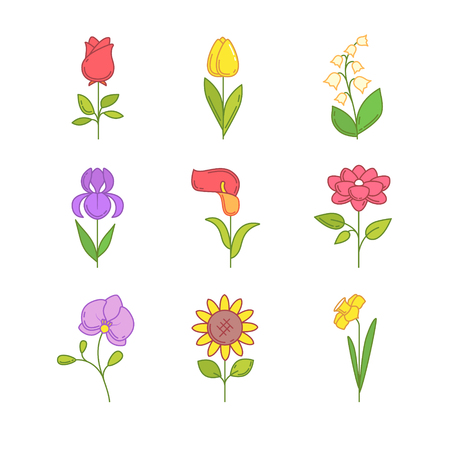 bouquet: Popular wedding flowers blossoming. Thin line icons set. Modern flat style symbols isolated on white for infographics or web use. Illustration