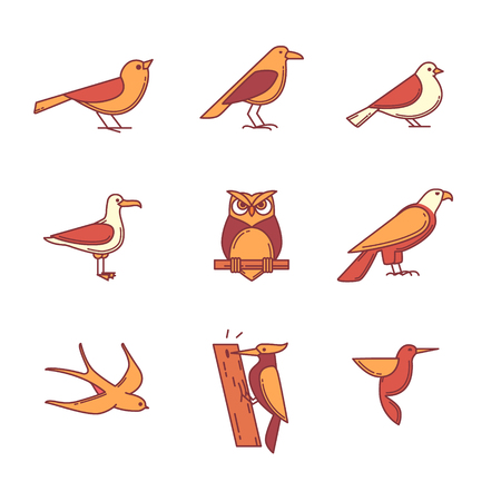 eagle owl: Birds icons thin line set. Flat style color vector symbols isolated on white.