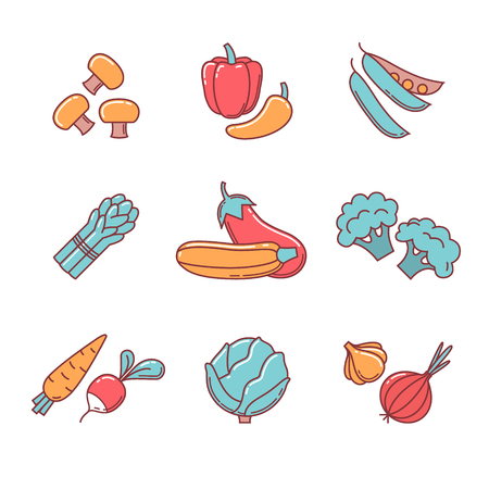 egg plant: Vegetable icons thin line set. Flat style color vector symbols isolated on white. Illustration