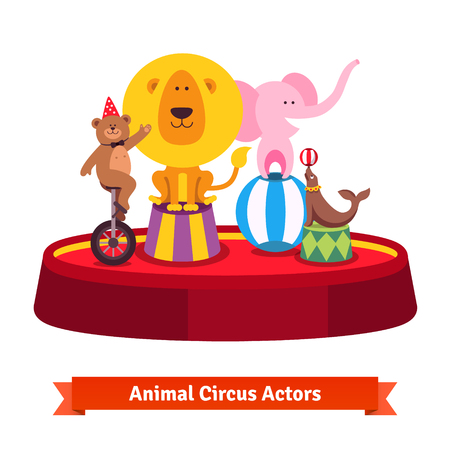 Playing circus animals show on red arena. Bear on a unicycle, elephant on a ball, seal and lion. Flat style cartoon illustration isolated on white background.