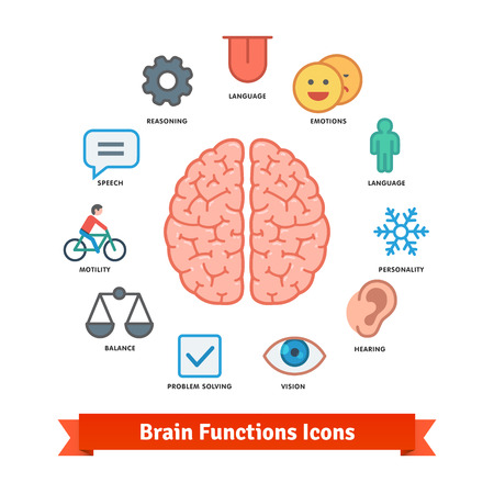 hearing: Brain function icons set. Flat colorful vector.