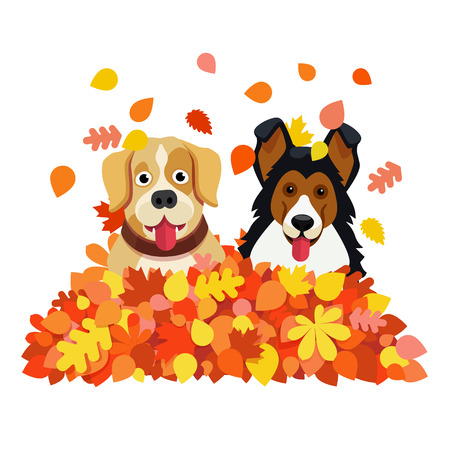 Two funny dogs playing in an autumn fallen leafs pile. Flat style vector illustration isolated on white background.