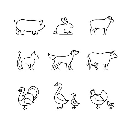 poult: Domestic and farm animals thin line art icons set. Modern black symbols isolated on white for infographics or web use. Illustration