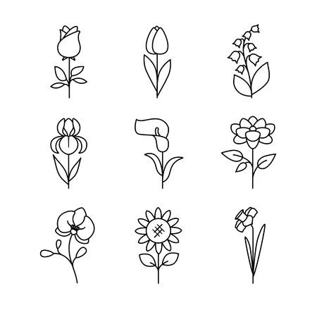 Populaire bruiloft bloemen bloeien. Dunne lijn art iconen set. Moderne zwarte symbolen geïsoleerd op wit voor infographics of web gebruik.