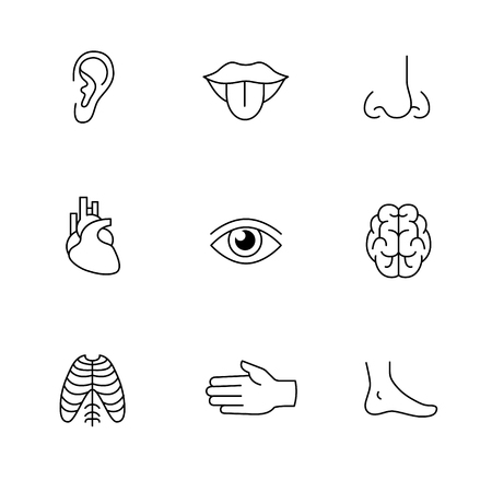 senses: Medical icons thin line art set. Human organs, senses, and body parts. Black vector symbols isolated on white.