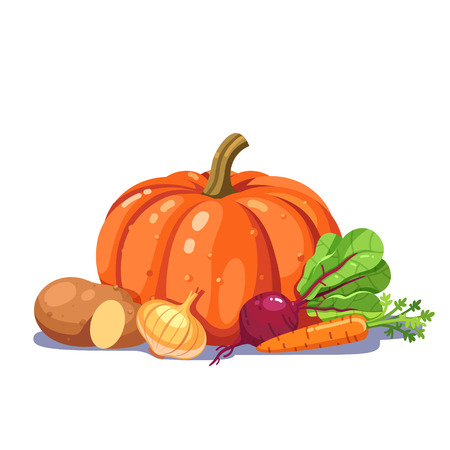 cucurbit: Freshly plucked vegetables in a nice composition. Modern flat style vector illustration isolated on white background.