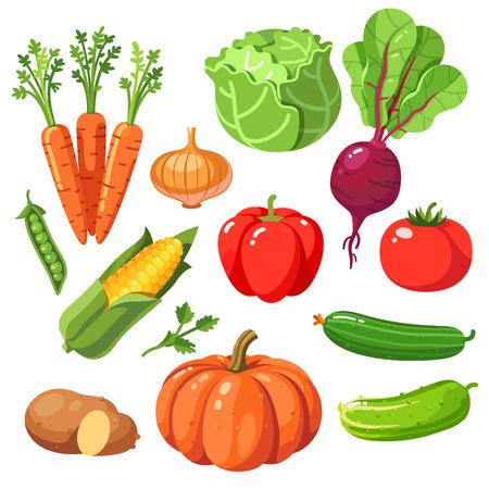 新鮮な健康野菜のセットです。モダンなフラット スタイル現実的なベクトル イラスト アイコンが白い背景で隔離。