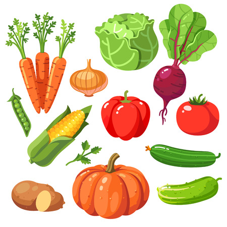 cucurbit: Set of fresh healthy vegetables. Modern flat style realistic vector illustration icons isolated on white background.