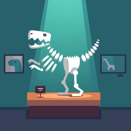 showpiece: Tyrannosaurus dinosaur skeleton at archeology museum exposition room. Lit with spot light. Modern flat style vector illustration cartoon clipart.