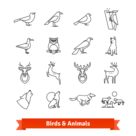 zoological: Wild animals and birds thin line art icons set