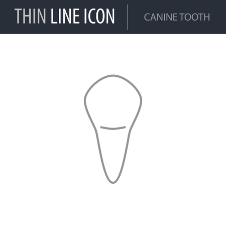 Symbol of Canine Tooth. Thin line Icon of Dentist Tools. Stroke Pictogram Graphic for Web Design. Quality Outline Vector Symbol Concept. Premium Mono Linear Beautiful Plain Laconic Logo Stock Vector - 124600423