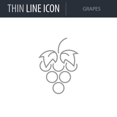 Symbol of Grapes. Thin line Icon of Diet. Stroke Pictogram Graphic for Web Design. Quality Outline Vector Symbol Concept. Premium Mono Linear Beautiful Plain Laconic Logo