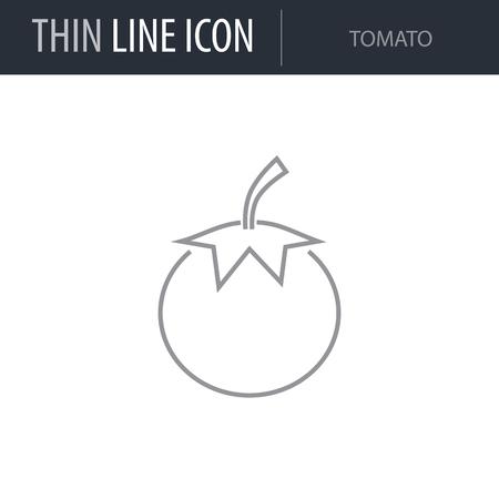 Symbol of Tomato. Thin line Icon of Food. Stroke Pictogram Graphic for Web Design. Quality Outline Vector Symbol Concept. Premium Mono Linear Beautiful Plain Laconic Logo Illustration