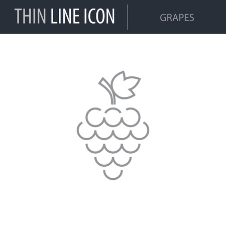 Symbol of Grapes. Thin line Icon of Food. Stroke Pictogram Graphic for Web Design. Quality Outline Vector Symbol Concept. Premium Mono Linear Beautiful Plain Laconic Logo