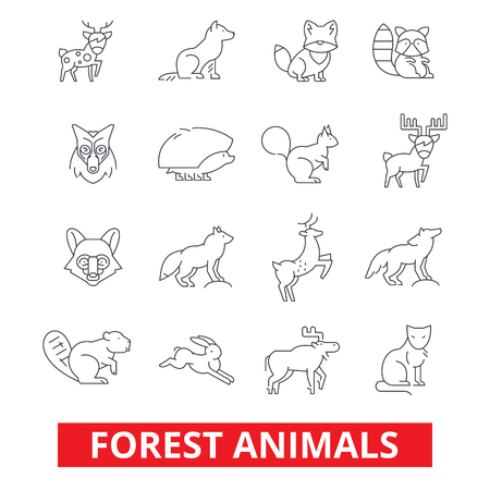Forest animals, elk, wolf, fox, rabbit, squirrel, hedgehog, hunting deer, bear line icons. Editable strokes. Flat design vector illustration symbol concept. Linear signs isolated on white background Stock Vector - 78424122