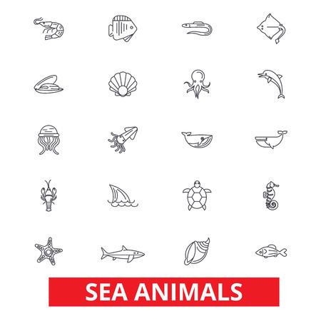 바다 동물, 바다 생물, 돌고래, 문어, 야생 생물, 상어, 고래, 물고기 선 아이콘. 편집 가능한 스트로크. 플랫 디자인 벡터 그림 기호 개념입니다. 흰색