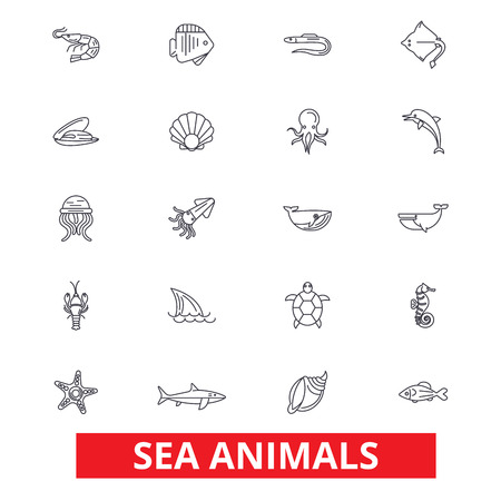 Sea animals, ocean creatures, dolphin, octopus, wild life, shark, whale, fish line icons. Editable strokes. Flat design vector illustration symbol concept. Linear signs isolated on white background