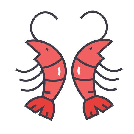 Shrimp illustration.