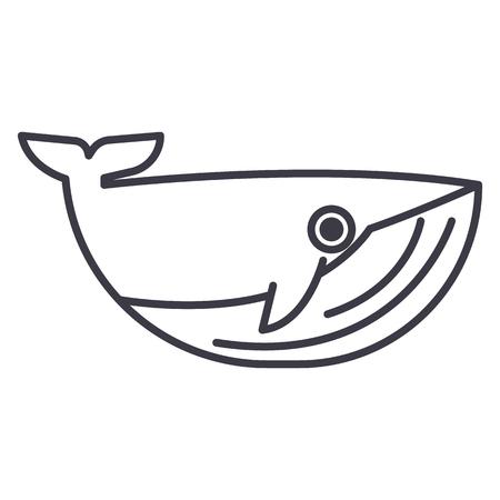 Whale line icon Illustration