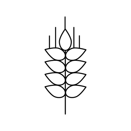 Wheat line icon