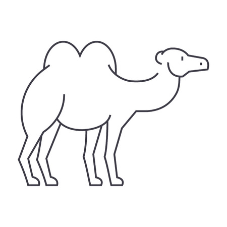 camel vector line icon, sign, illustration on white background, editable strokes 向量圖像