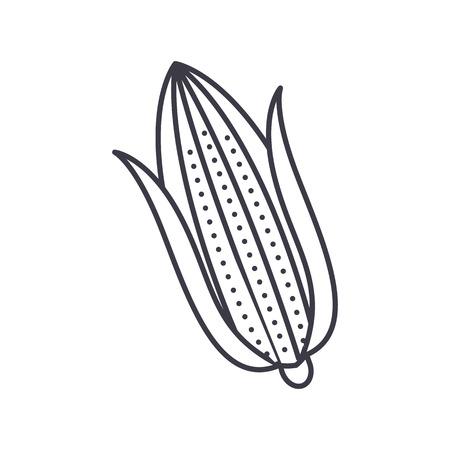 옥수수 벡터 라인 아이콘, 기호, 흰색 배경에 그림 편집 가능한 획