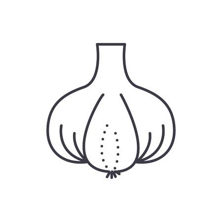 마늘 벡터 라인 아이콘, 기호, 편집 가능한 획 흰색 배경에 그림.