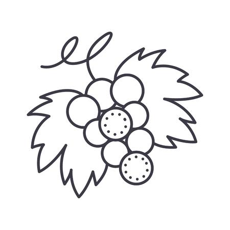 ブドウのベクトル線のアイコン、白い背景の上の図。
