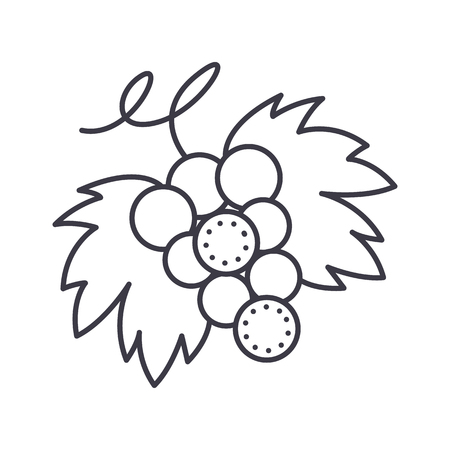 Grape vector line icon, illustration on white background. 版權商用圖片 - 87222316