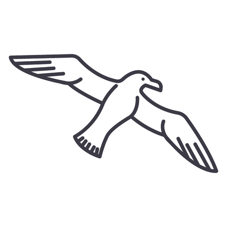 Seagull vector line icon, sign, illustration on white background.