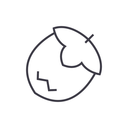 nut vector line icon, sign, illustration on white background, editable strokes