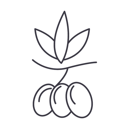 olives vector line icon, sign, illustration on white background, editable strokes Illustration