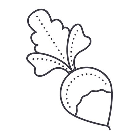 radish vector line icon, sign, illustration on white background, editable strokes Illustration