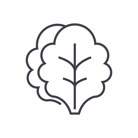 Salad line icon illustration. Illustration
