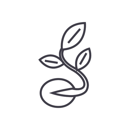 Seed with growing plant vector line icon.
