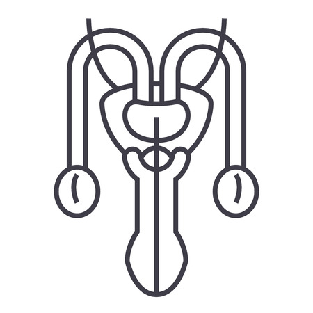 male sexual organs vector line icon.