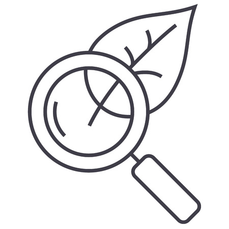magnifier glass with leaf,biology vector line icon, sign, illustration on white background, editable strokes