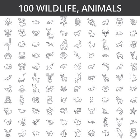 Animal line icons signs Illustration vector concept Editable strokes