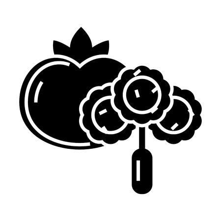 野菜アイコン、イラスト、ベクトル分離背景に記号