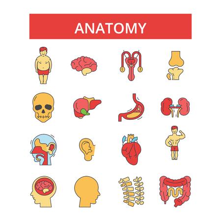 Editable strokes icons. Ilustração
